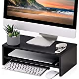 FITUEYES Monitor Stand - 2 Tiers Computer Monitor Riser...